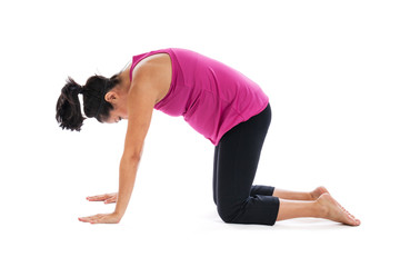 Pregnancy yoga cat stretch