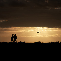 couple at sunset in melbourne australia