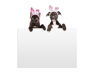 Fototapete - Easter Kitten and Puppy Holding Sign