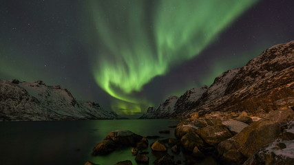 Wall Mural - Northern Lights over fjords in Norway coast