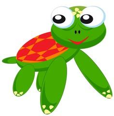 turtle frog mix.