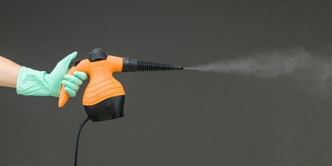 hand held steam cleaner