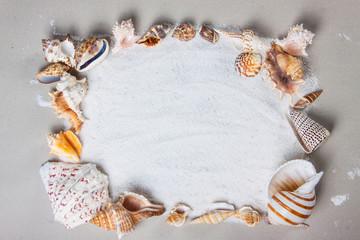 beach, summer, sea shells. Beautiful summer background texture