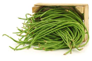 fresh long beans(Vigna unguiculata subsp. sesquipedalis)