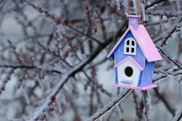 Colorful birdhouse hanging on ice covered tree branches