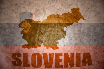 vintage slovenia map
