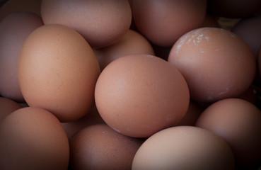 Chicken boiled eggs