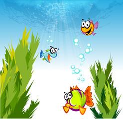 바다 물고기