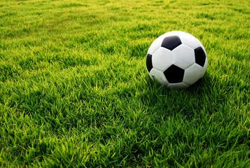 football green grass