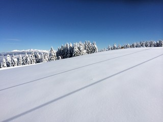 Wintertraum in den Bergen