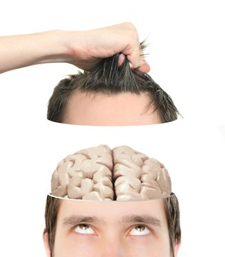 Hand elevates half of a sliced head with brain inside