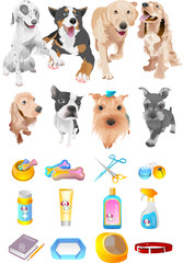 애완동물과 용품