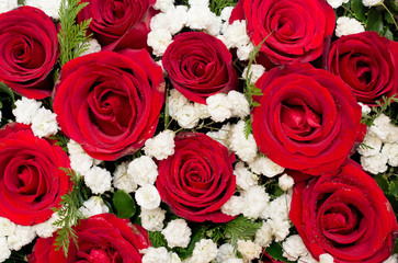 Bouquet of red roses and white flower in Heart shaped Box