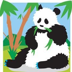 팬더이미지