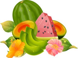 다양한 과일