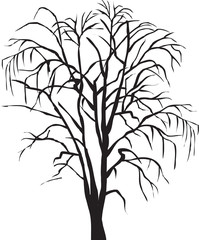 나무이미지