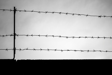 Black barbed wire silhouette on dark sky background