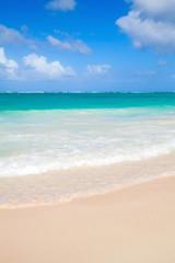 Vertical coastal sea landscape. Atlantic ocean coast