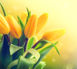 Wall Mural - Yellow tulips bouquet over nature green blurred background