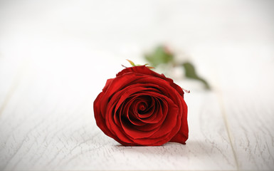 Single red rose on a wooden background. Valentine Da