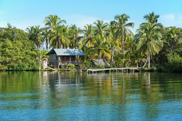 Rustic Amerindian hut with dock on tropical shore