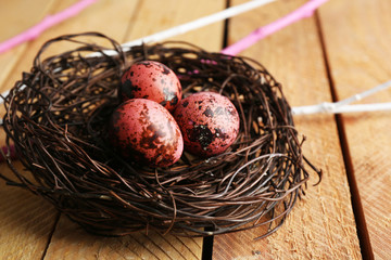 Bird colorful eggs in nest on wooden background