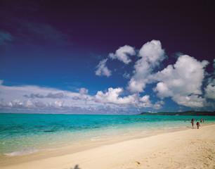 바다와 해변