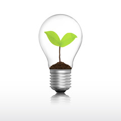 Light bulb with plant vector