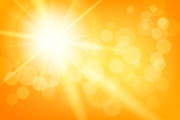 Nature sunny abstra