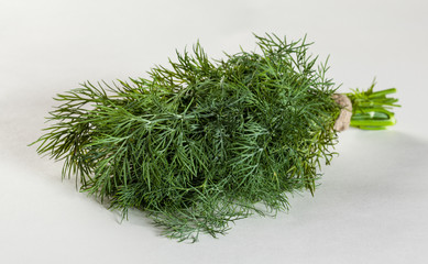 Bunch of a fresh dill