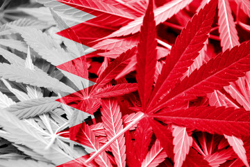 Bahrain Flag on cannabis background. Drug policy.