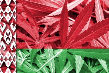 Belarus Flag on cannabis background. Drug policy.