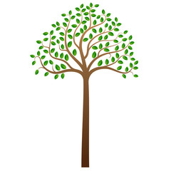 Green tree on white background, vector illustration