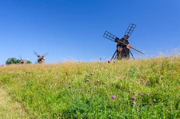 Group of historical windmills on Oland island