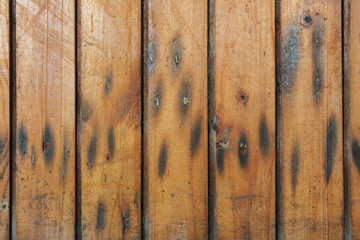 Wooden fence#1