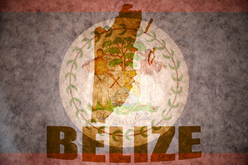 vintage belize map