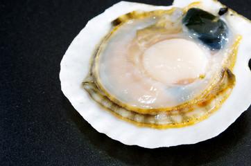 貝殻付きのホタテ貝
