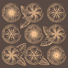 Decorative vector oranges, lemons and limes in vintage style