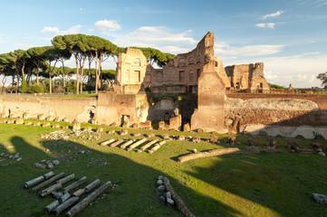 Roma Foro Romano Monte palatino