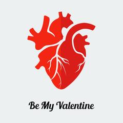 Vector be my valentine human heart