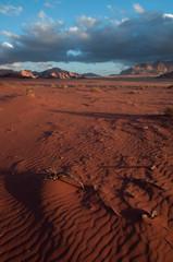 Keuken foto achterwand Zandwoestijn Wadi Rum