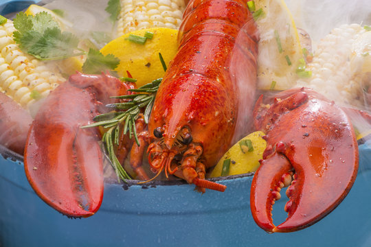 Steamed Lobster and Vegetables cooking over a barbecue grill