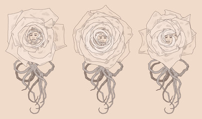 Vector illustration with three abstract cartoon roses. Shading graphics. Can be used as postcard, illustration