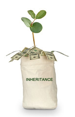 Bag with inheritance