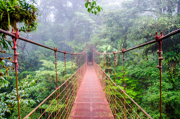 Poster de jardin Ponts Bridge in Rainforest - Costa Rica - Monteverde
