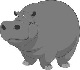 Funny hippo