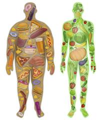 Human, thin, fat. Nutrition, diet, food. Vector illustration