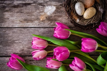 bouquet of pink tulips with a nest with eggs