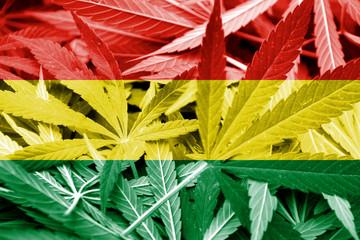 Bolivia Flag on cannabis background. Drug policy.