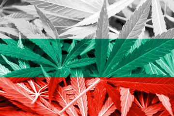Bulgaria Flag on cannabis background. Drug policy.